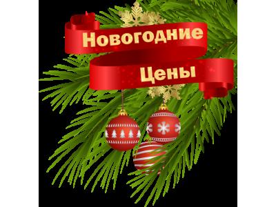 Новогодние акции на PnevmoNN